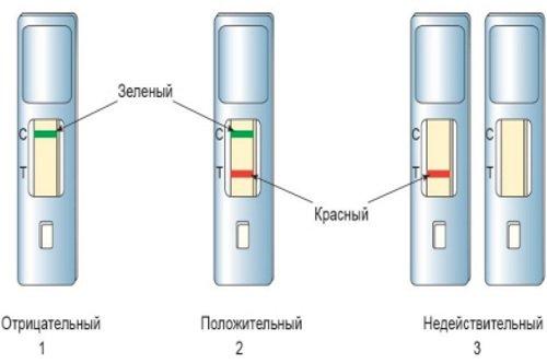 Rasshifrovka-jekspress-testa-na-skrytuju-krov-v-kale