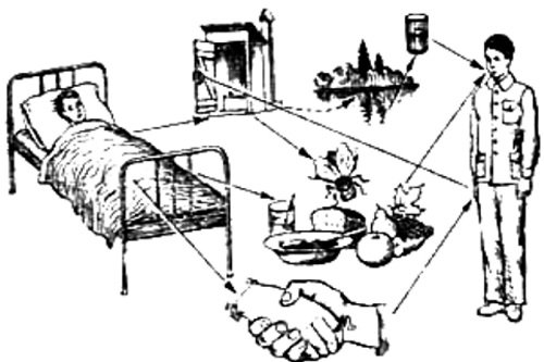 Fekalno-oralnyj-put-peredachi-infekcii