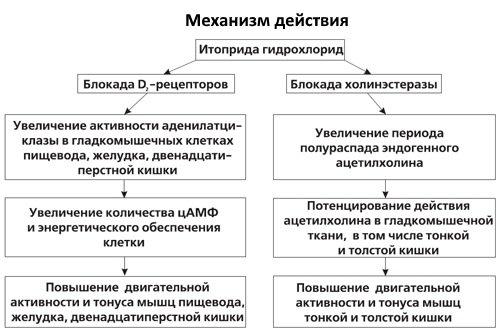 Mehanizm-dejstvija-Itoprida