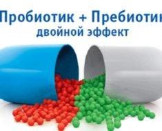 Probiotik-prebiotik