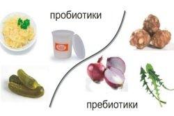 Probiotiki-prebiotiki-v-produktah