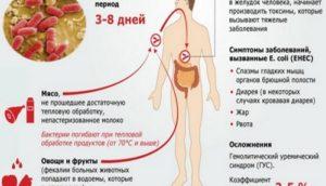 E coli лактозонегативные повышены у ребенка