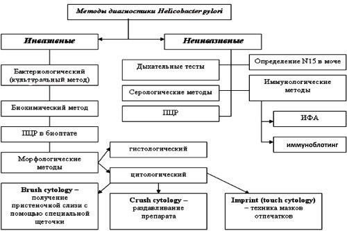 Metody-diagnostiki-Helicobacter-pylori