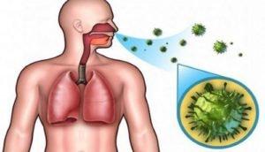 Анализ кала на кишечную группу: как сдавать, бактериологическая диагностика инфекции для госпитализации