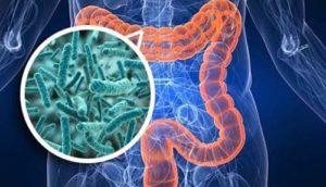 Как защитить кишечник при приеме антибиотиков