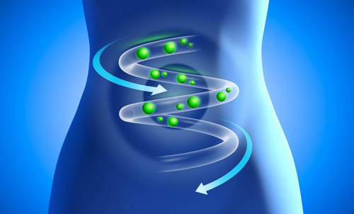Восстановление микрофлоры кишечника