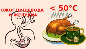 Горячая пища