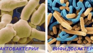 От дисбактериоза после антибиотиков препараты