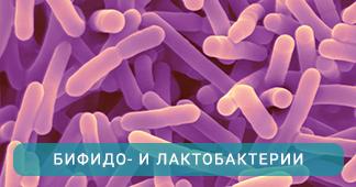 Бифидо и лактобактерии