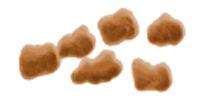 Бристольская шкала кала: описание и расшифровка
